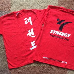Synergy Summer Camp